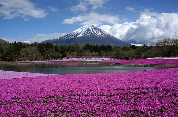 画像:富士山